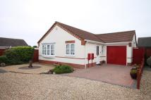 Detached Bungalow in 4 Shelley Close...