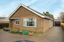 Detached Bungalow for sale in Mikehama, Alford Road...