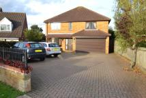Detached home in Henley Road, Ipswich