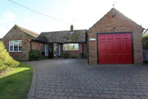 Detached Bungalow for sale in Burnt House Lane, Kirton