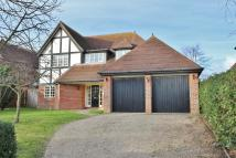 Detached property in Foxgrove Lane, Felixstowe