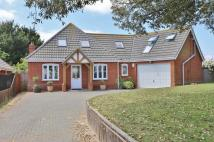 Detached Bungalow in Maybush Lane, Felixstowe