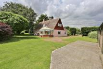 5 bed Detached home for sale in Ipswich Road, Newbourne