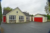 Detached Bungalow in Markfield Road, Groby