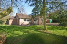Detached Bungalow in Portland Road...