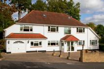 Detached house for sale in Hook Heath, Woking...
