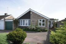 Detached Bungalow in Birch Close...