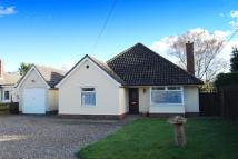 Detached Bungalow for sale in Pakenham Road...