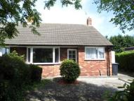 Semi-Detached Bungalow to rent in South Lane, Haxby