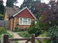 2 bed Detached Bungalow to rent in Sandy Lane, Woking