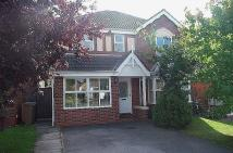 Detached property to rent in *Available 29th August...