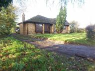 Bungalow for sale in Epping Road, Roydon...
