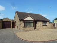 Detached Bungalow in Shire Avenue, Bradwell...