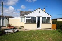 Detached Bungalow for sale in Little Scratby Crescent...