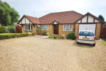 Detached Bungalow for sale in Mulberry Way, Spalding