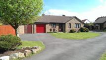 Detached Bungalow for sale in Touchstone Avenue...