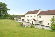 property for sale in Holsworthy, Holsworthy