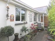 Semi-Detached Bungalow in Holsworthy, Holsworthy