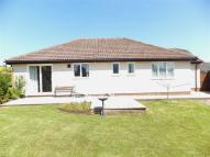 Detached Bungalow for sale in Halwill Junction...