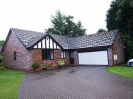 Detached Bungalow to rent in Woodfield Court, Leek...