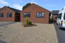 Detached Bungalow to rent in Hayes Close, Leek