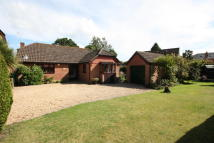 2 bed Detached Bungalow for sale in Calmore Road...