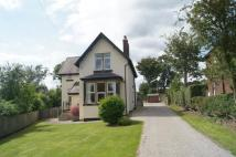 3 bedroom property to rent in RIPON ROAD, HARROGATE...