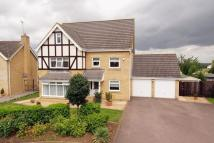 6 bed Detached property in Teal Close...