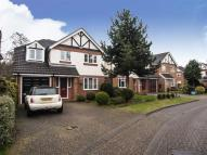 4 bed Detached house to rent in Hedley Way, Maulden