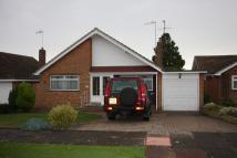 Detached Bungalow in Halland Close...