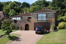 3 bed Detached Bungalow for sale in Lincoln Close...