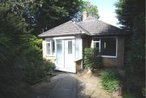 Detached Bungalow for sale in Spring Close, Ratton...