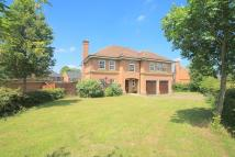 house to rent in 6 bedroom Detached House...