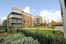 1 bedroom new Flat in Needham Court...