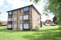 1 bed Flat for sale in BASILDON
