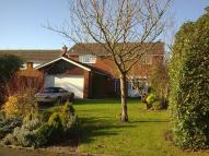 Detached house to rent in Lansdowne...