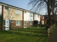 3 bed Terraced home to rent in Spring Terrace, Reading
