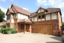 5 bedroom new house to rent in Ashbourne Gardens...