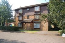 Hambledon Close Studio apartment to rent