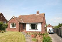 Detached Bungalow for sale in Holford Road, Bridgwater