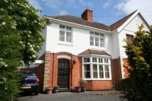3 bedroom semi detached property to rent in Wembdon Rise, Wembdon