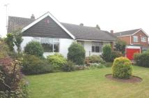 Detached Bungalow in Briar Lane, Mansfield