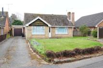 Detached Bungalow for sale in Borders Avenue...