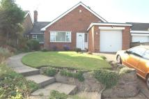 Detached Bungalow in Denby Drive, Berry Hill...
