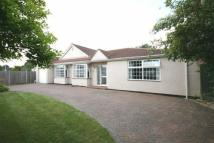 Detached Bungalow for sale in Burnham