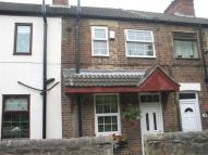 Beech Terrace Cottage to rent