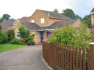 4 bedroom Detached home to rent in Hurst Park Road, Twyford