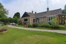 3 bedroom Detached Bungalow for sale in Sandy Rise...