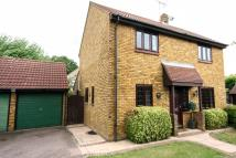 Detached property to rent in Kelvedon Green...