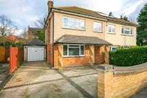 3 bed semi detached property to rent in MARKS CLOSE, Ingatestone...